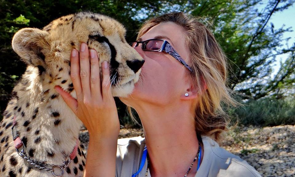 cheetah handler interview