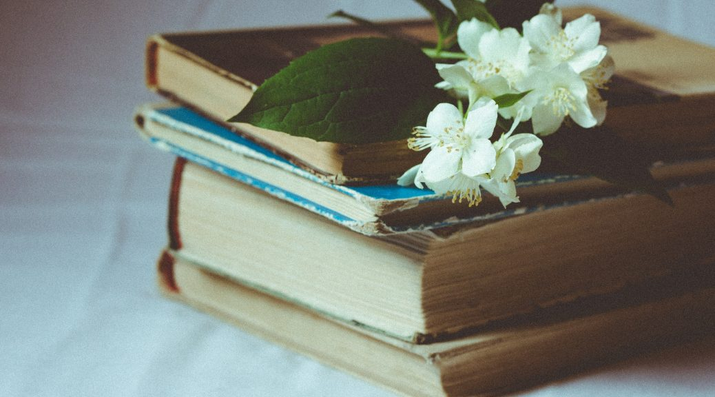 reading challenge 2018 around the world in words claudia hauter